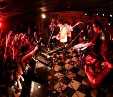 news_large_kyuusonekokami_live2